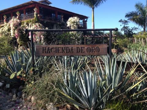 Puerto Vallarta Botanical Jardine