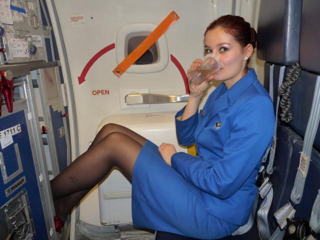 flight attendant drinking