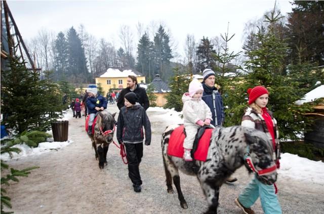 Children love pony rides