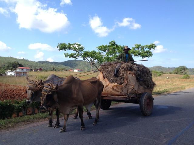 cuban wagon