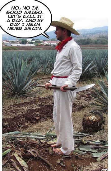 funny tequila job