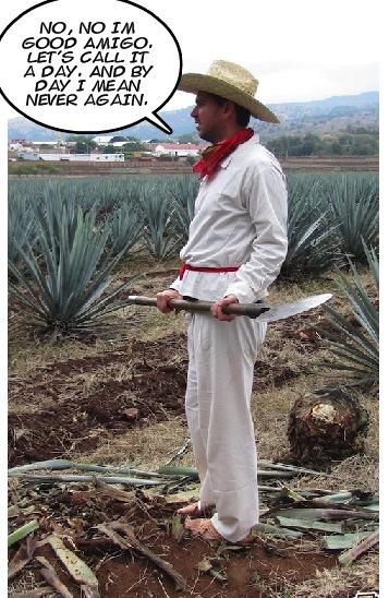 funny tequila job