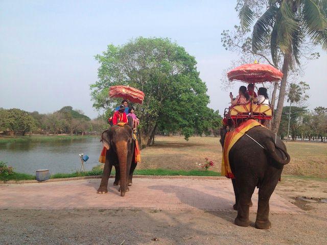 elephants with tourists