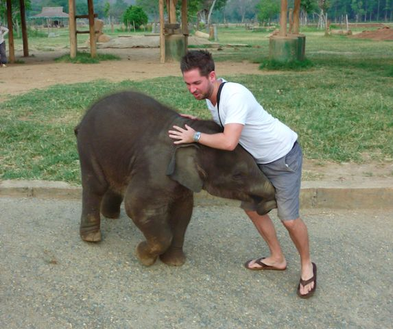 a wild elephant attempts to take me out. Little did he know I possess bear like strength (see: 7 year old girl)