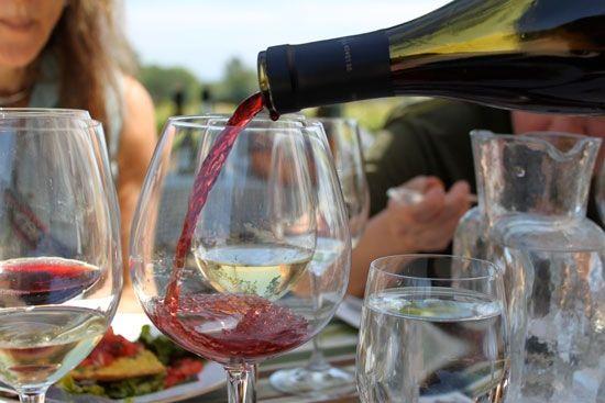 winery jobs